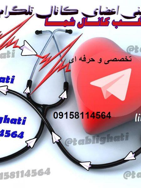 افزایش اعضای کانال تلگرام  تخصصی