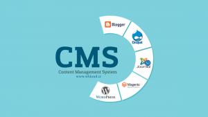 cms چیست ؟